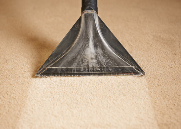 Carpet cleaning services from GesClean