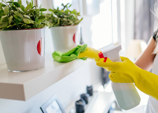 Regular domestic cleaning in Surrey