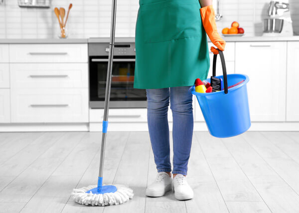 Domestic cleaners in Surrey